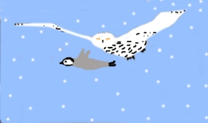 flying with snowy owl
