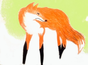 fox looks behind